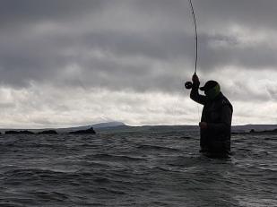 Fly Fish Islay Sea Trout Fishing