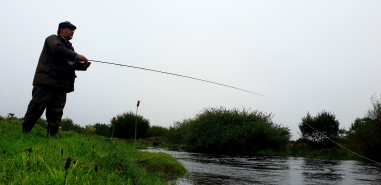 river laggan salmon
